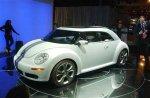beetle ragster.jpg
