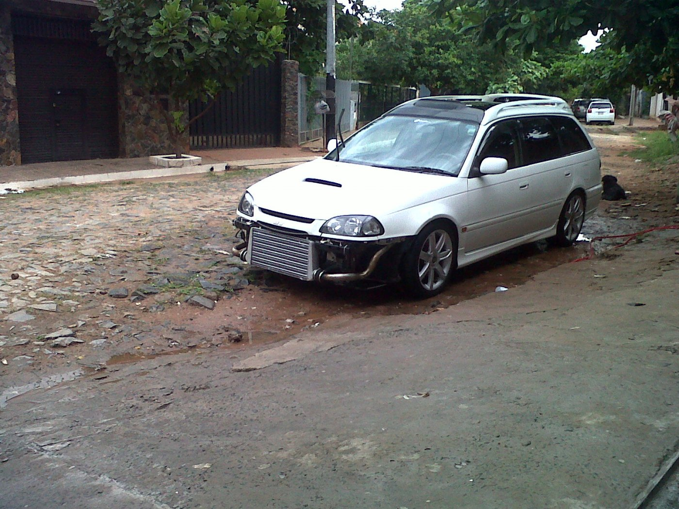 IMG00436-20121110-1659.jpg