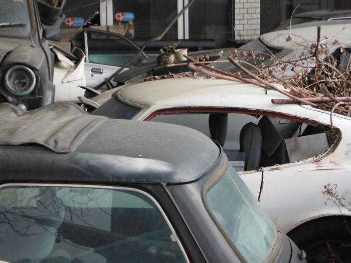 abandoned_cars_08.jpg
