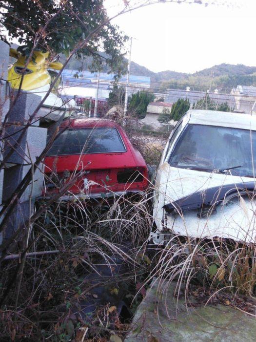 abandoned_cars_31.jpg