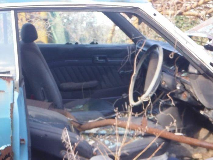 abandoned_cars_41.jpg