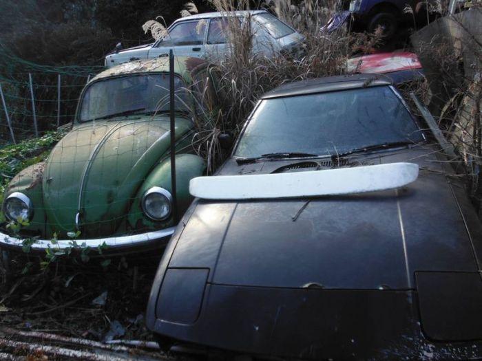abandoned_cars_43.jpg