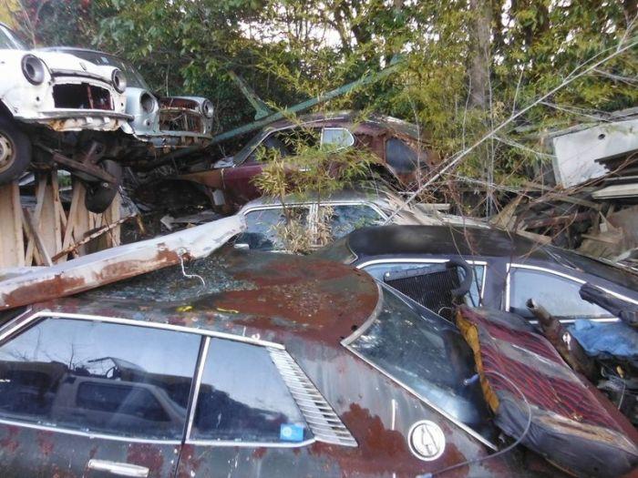 abandoned_cars_44.jpg