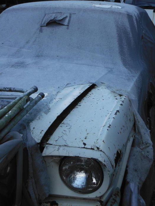 abandoned_cars_48.jpg