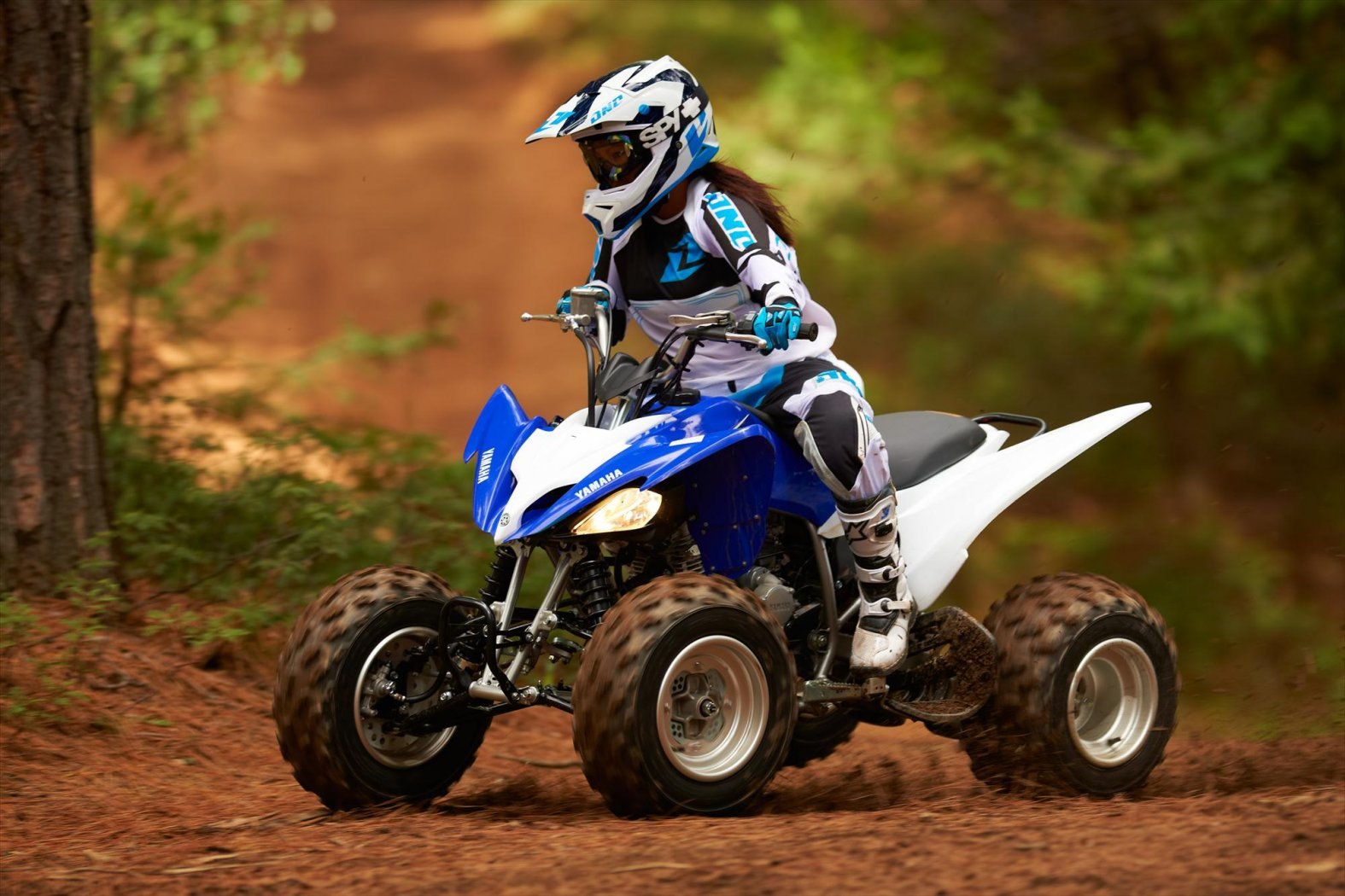 2013-yamaha-raptor-250-the-middleweight-motocross-atv-photo-galleries_5.jpg