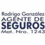 Logo RG Seguros.jpg