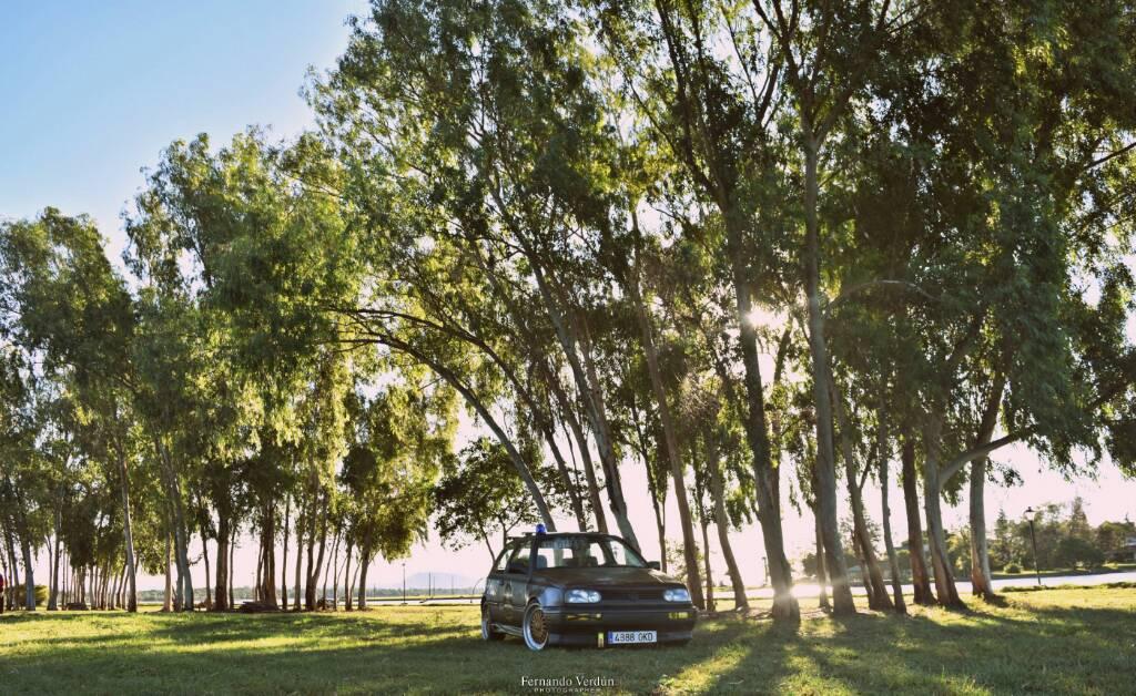 PicsArt_07-19-02.49.19.jpg