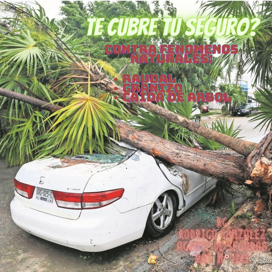 RG FENOMENOS NATURALES.jpg